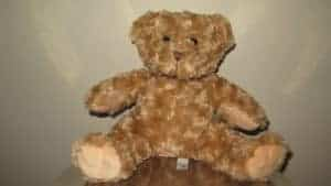 Brown Bear singing personalized plush