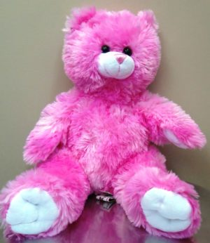Singing Personalized Pink Bear