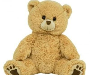 Beige bear personalized singing plush